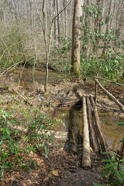 Buckhorn Gap/Avery Creek Trail -- 2,580'