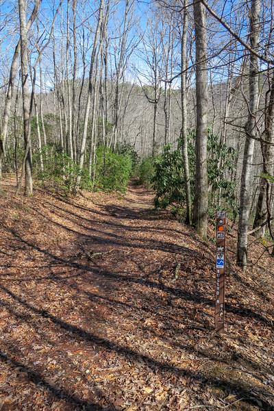 Buckhorn Gap Trail -- 2,600'