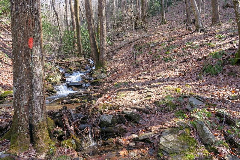 Pressley Cove Trail -- 2,980'