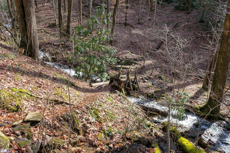 Pressley Cove Trail -- 2,960'