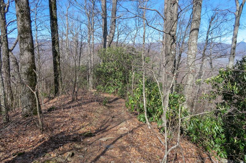Black Mountain Trail -- 4,120'