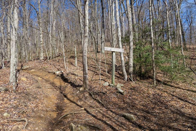 Black Mountain-Turkey Pen Gap Trail Junction -- 4,120'