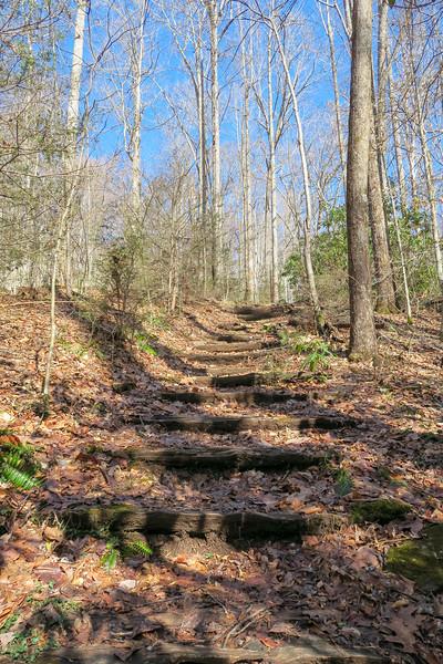 Pressley Cove Trail -- 3,100'