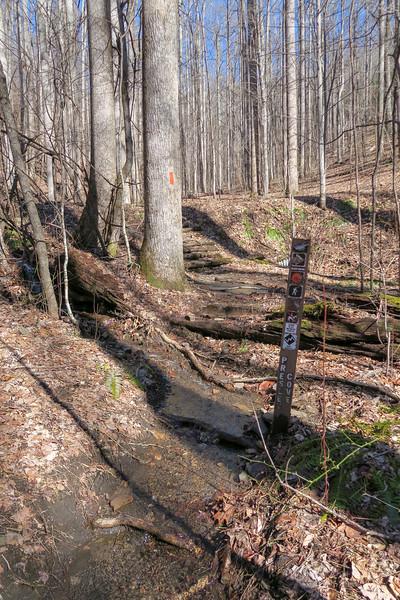 Pressley Cove Trail -- 3,240'