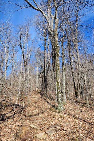 Black Mountain Trail -- 4,000'