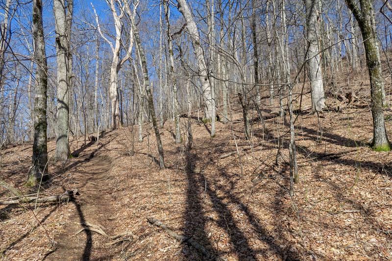 Black Mountain Trail -- 4,160'