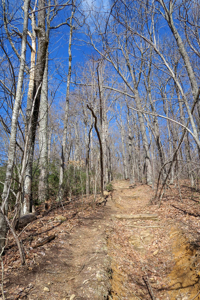 Black Mountain Trail -- 3,700'