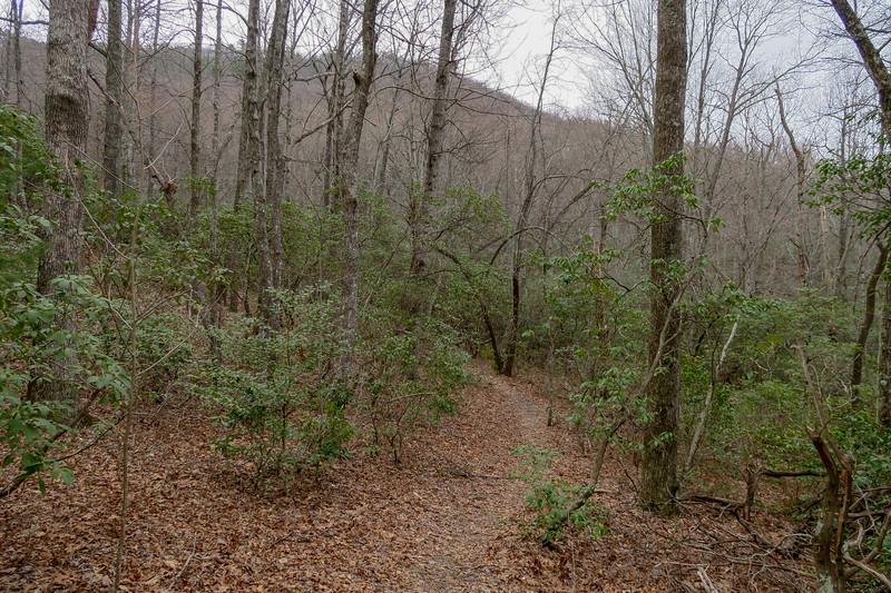 Bad Fork Trail -- 3,020'