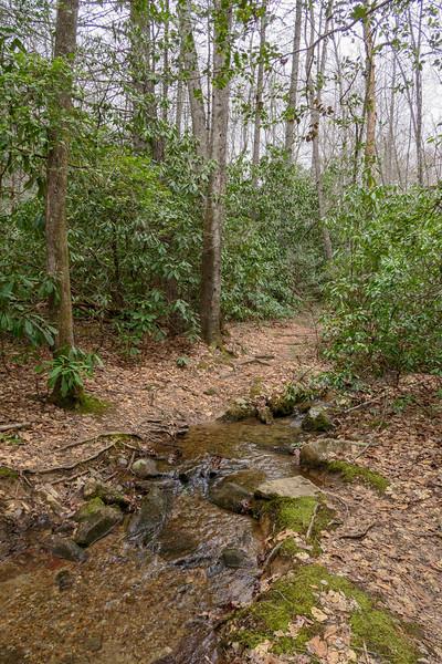 Bad Fork Trail -- 2,630'