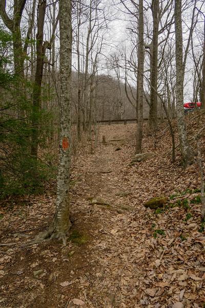Bad Fork Trail -- 3,270'