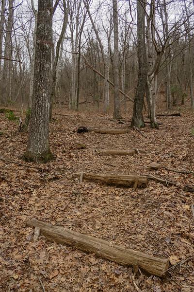 Bad Fork Trail -- 3,060'