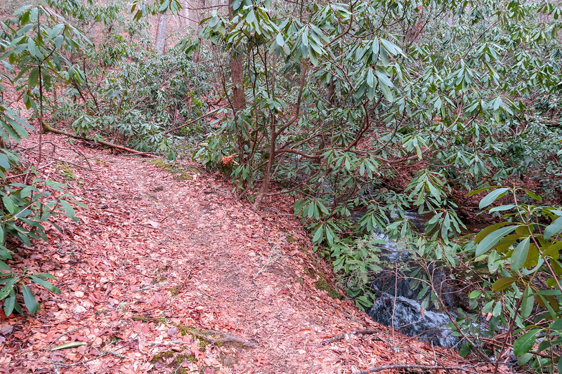 Bad Fork Trail -- 2,580'