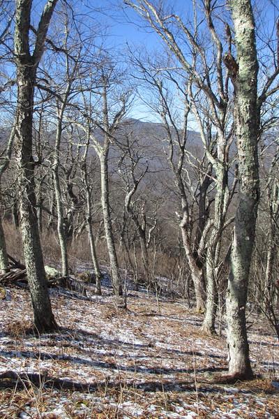Pisgah Ridge Manway - 5,150'