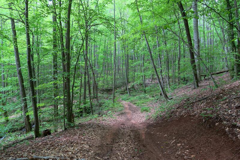 Sidehill Trail -- 2,630'