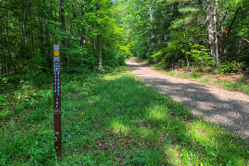 Forest Road 479F-Little Hickory Top Trail Junction -- 2,350'