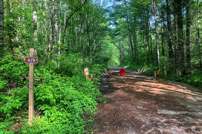 Forest Road 479F -- 2,180'