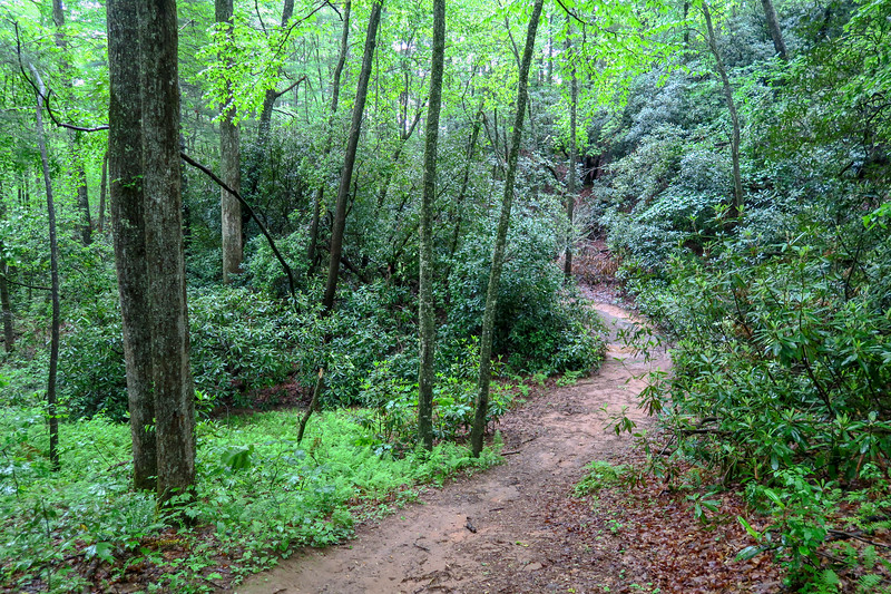 Lower Sidehill Trail