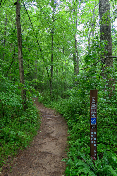 Forest Road 479F-Lower Sidehill Trail Junction -- 2,200'