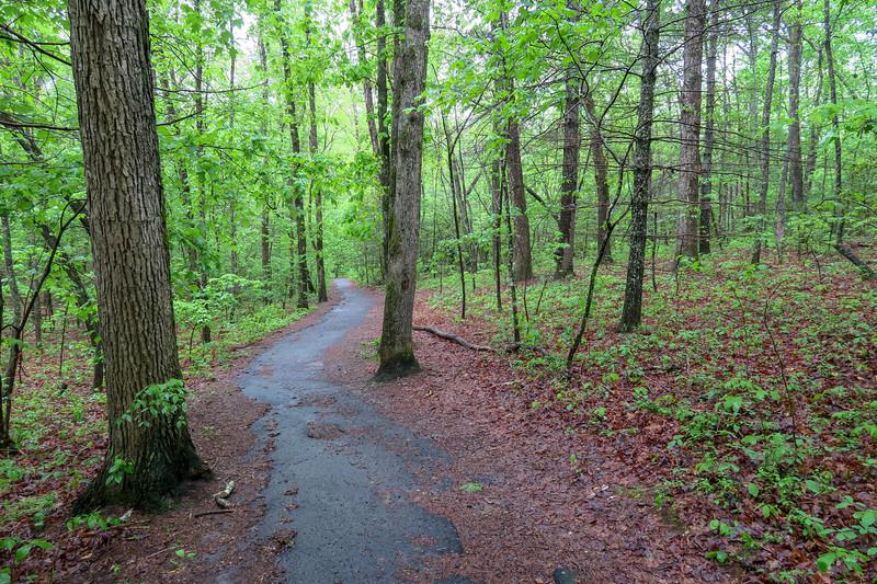 Deer Lake Lodge Trail -- 2,150'