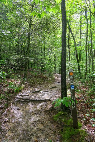 Deer Lodge Lake Trail -- 2,230'