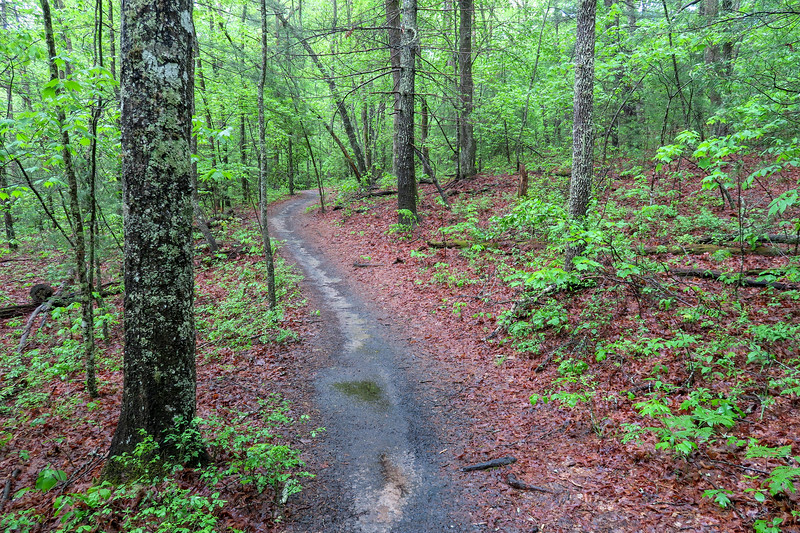 Hardtimes Connector Trail -- 2,160'