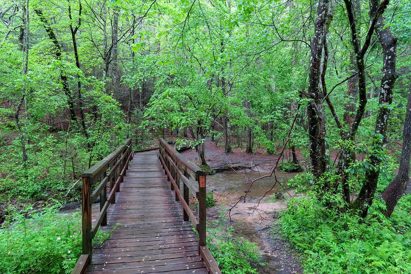 Deer Lake Lodge Trail -- 2,140'
