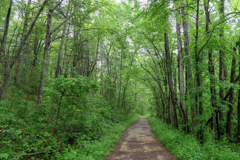 Wolf Branch Trail -- 2,160'