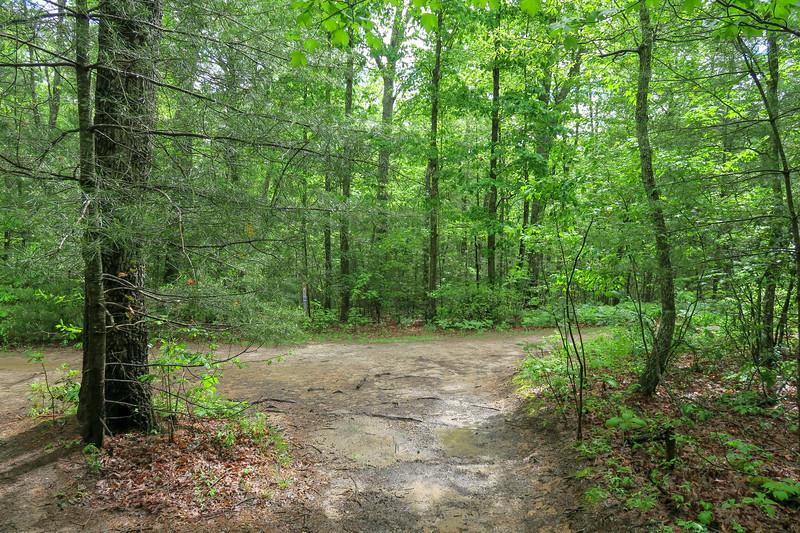 Deer Lodge Lake Trail -- 2,250'