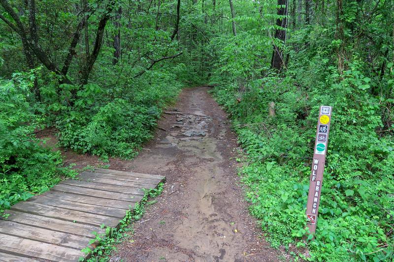 Wolf Branch Trail @ Deer Lake Road -- 2,160'