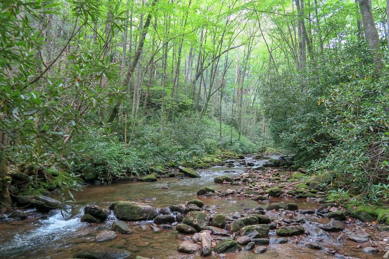 Big Creek -- 2,700'