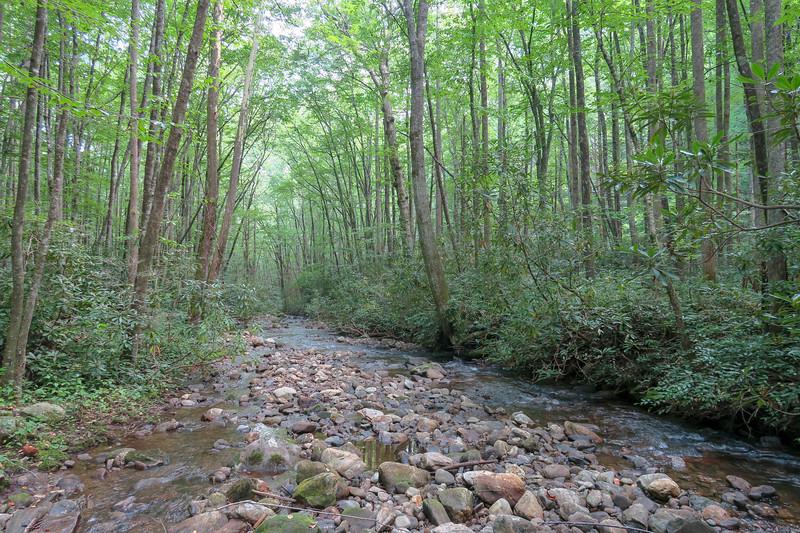 Big Creek -- 2,640'