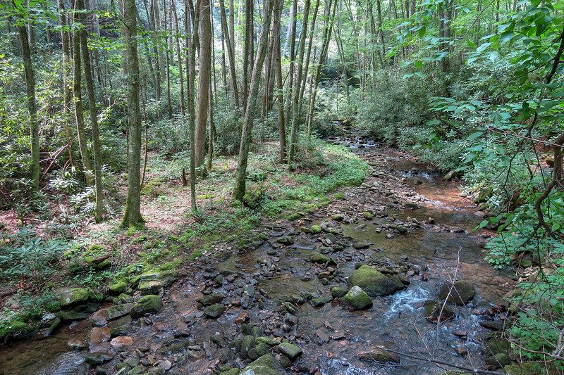 Big Creek -- 2,790'