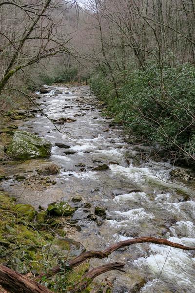 East Fork Pigeon River -- 3,390'