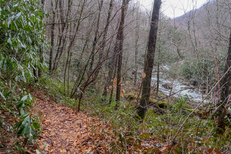 Big East Fork Trail -- 3,580'