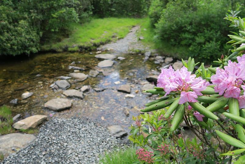 Flat Laurel Creek Trail - 5.740'