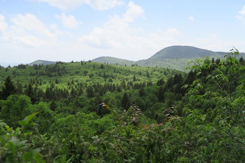 Little Sam Trail - 5,600'
