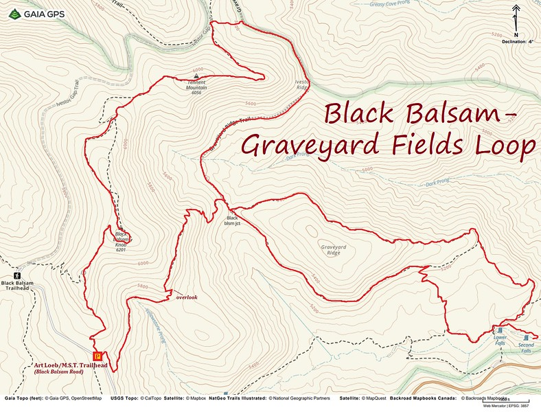 Black Balsam/Graveyard Fields Loop Hike Route Map