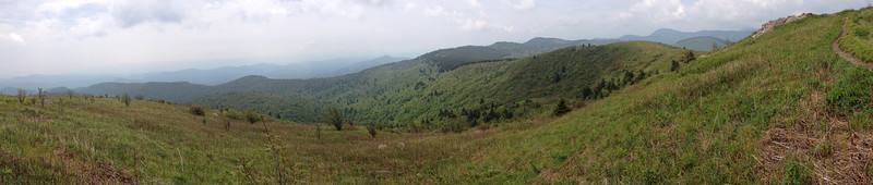 Black Balsam Knob Summit (6,214')