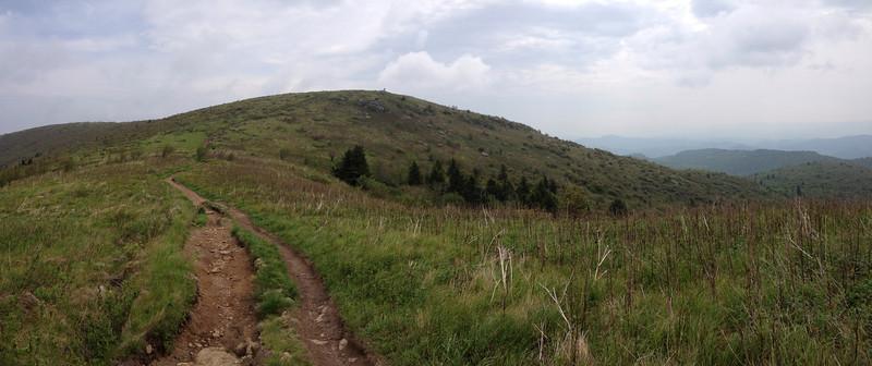 Art Loeb Trail (6,000')