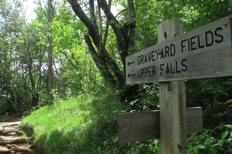 Graveyard Fields Loop Trail (5,000')