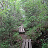 <b>Mountains-to-Sea Trail (5,680') - </b>Water under the bridges...