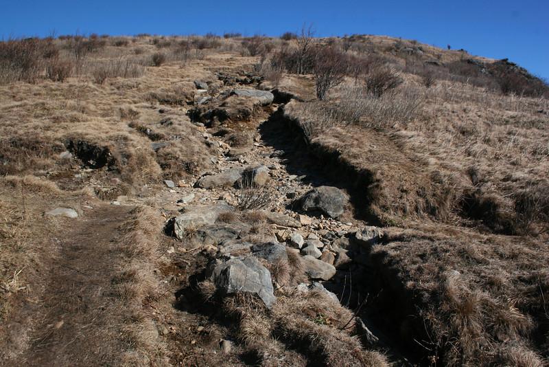 Art Loeb Trail -- 6,150'