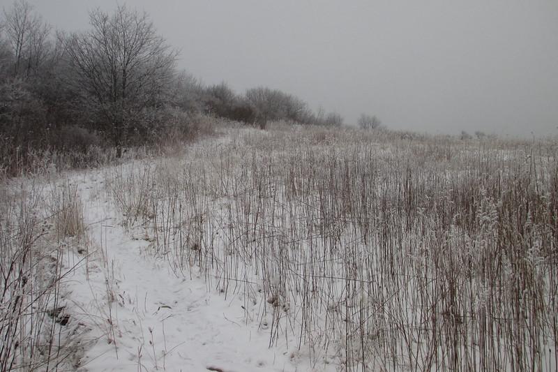 Sam Knob Trail - 5,620'