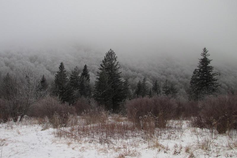Sam Knob Trail - 5,440'
