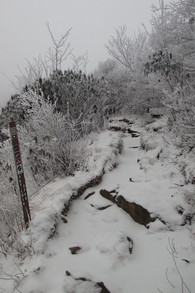 Art Loeb Spur Trail - 5,800'