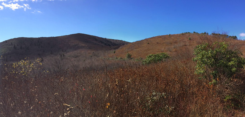 Graveyard Ridge Trail -- 5,650'
