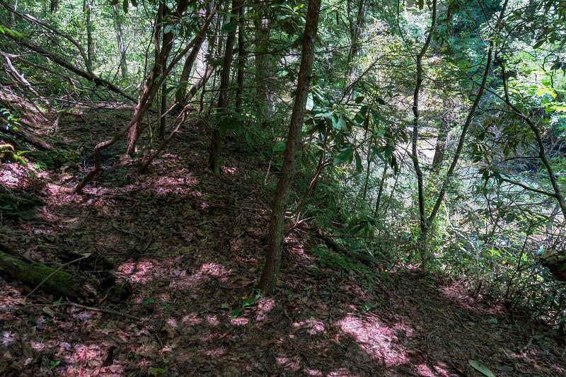 Boxcar Falls/Rail Grade Path @ Boxcar Falls -- 2,530'