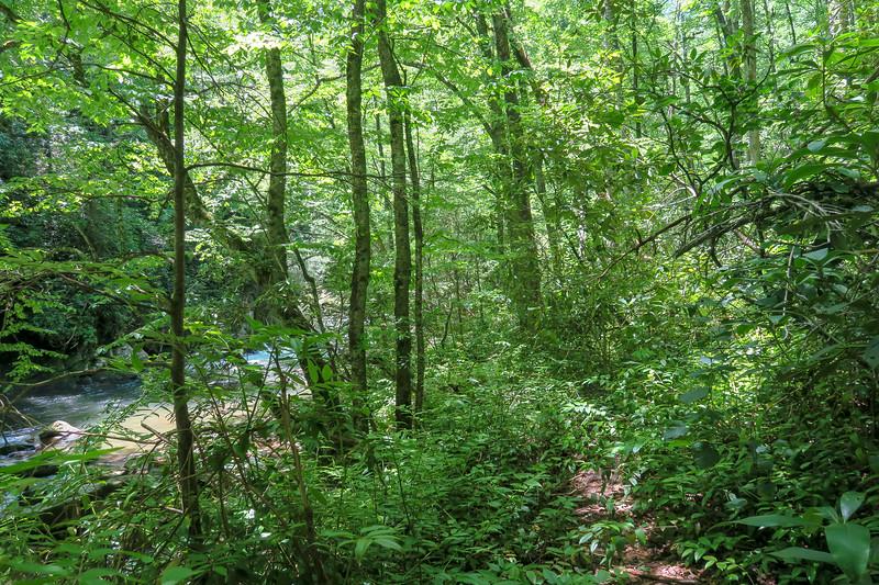 Boxcar Falls/Rail Grade Path -- 2,450'