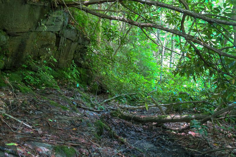 Boxcar Falls/Rail Grade Path -- 2,480'
