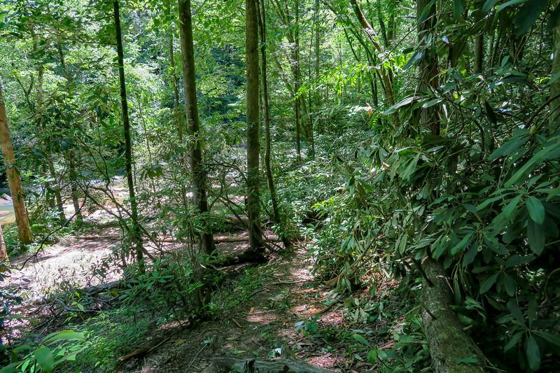 Boxcar Falls Path -- 2,380'